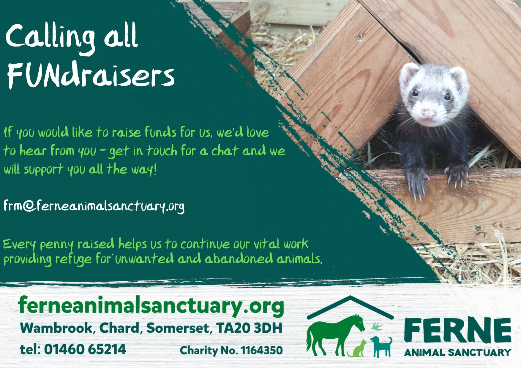 Organise your own fundraising event in aid of Ferne