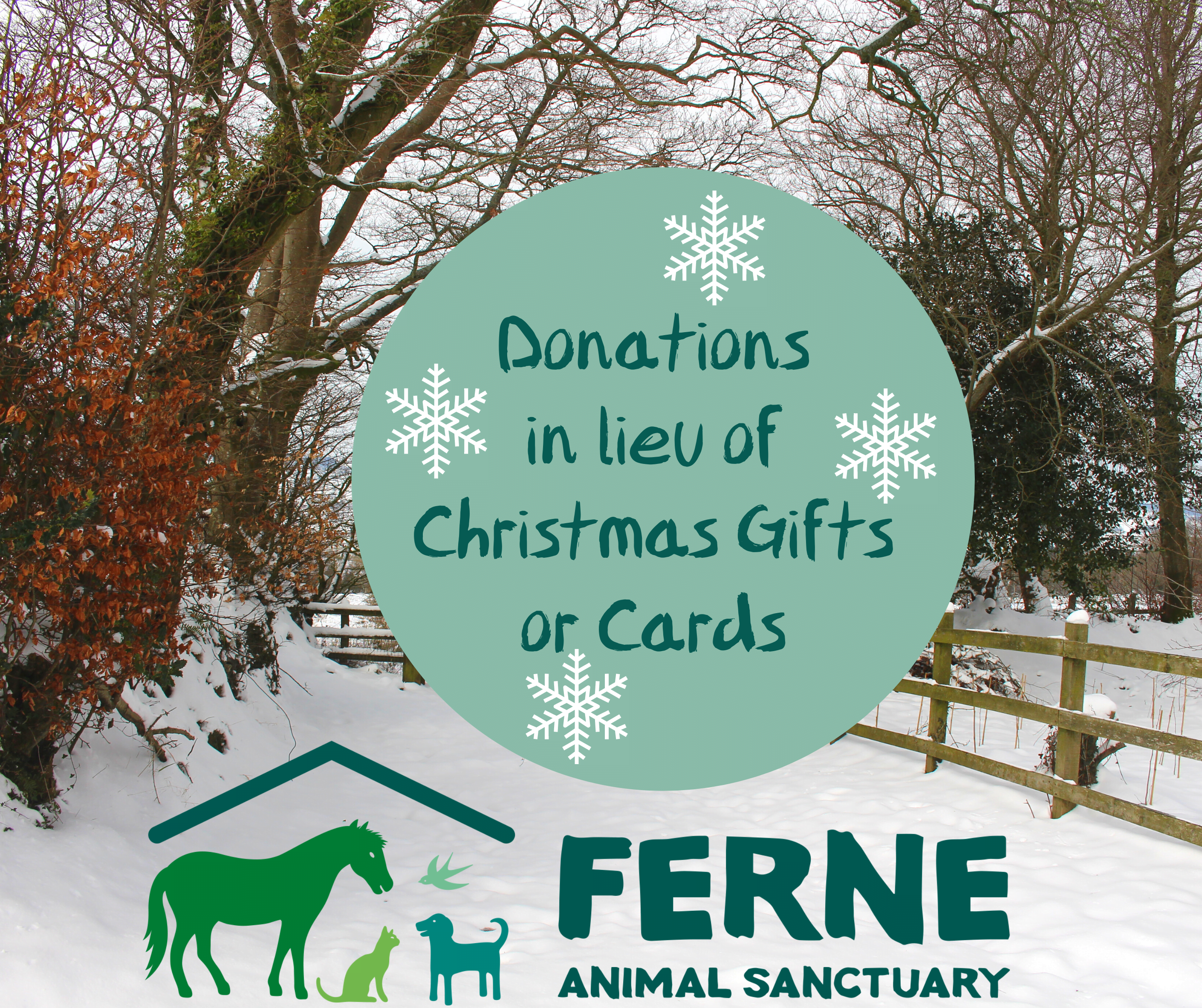 Donations in lieu of Christmas Gifts or Cards