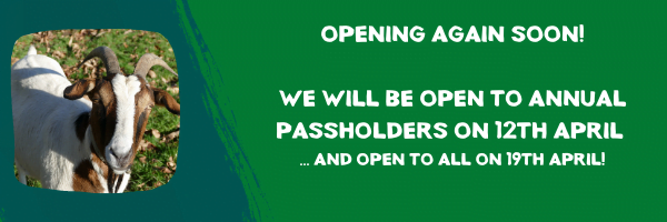 REOPENING! 12th April!